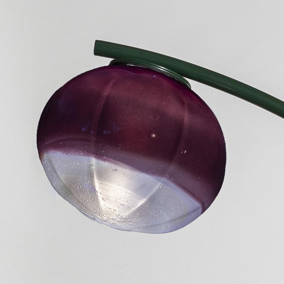 anemone-verre